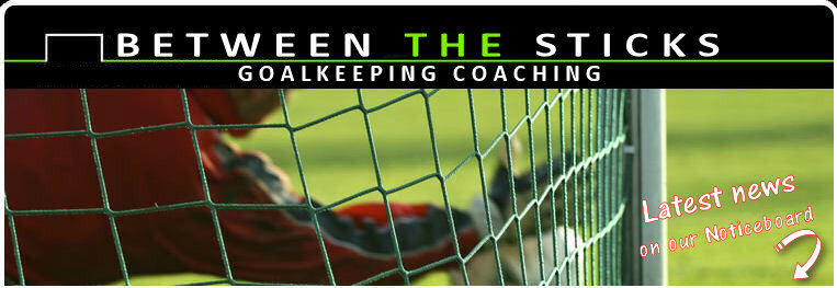 Between the Sticks Goalkeeping Coaching. New Training Session